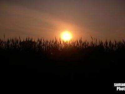 Sunset view from Koshi Barrage, Sunsari Nepal